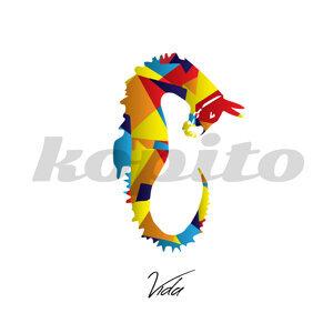 Kopito