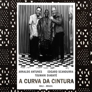 Arnaldo Antunes, Edgard Scandurra, Toumani Diabaté 歌手頭像