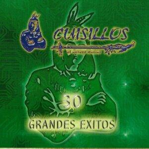Banda Cuisillos Musical 歌手頭像