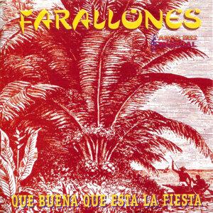 Farallones 歌手頭像