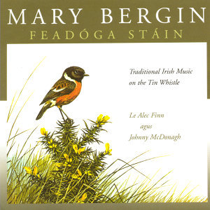 Mary Bergin 歌手頭像