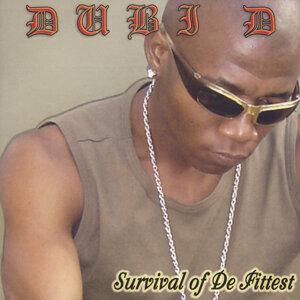 Dubi D 歌手頭像