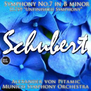 Munich Symphony Orchestra & Alexander von Pitamic 歌手頭像