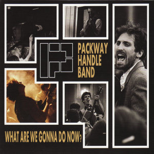 The Packway Handle Band 歌手頭像