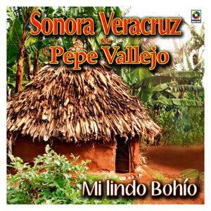 Sonora Veracruz De Pepe Vallejo 歌手頭像