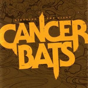 Cancerbats 歌手頭像