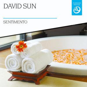 David Sun 歌手頭像
