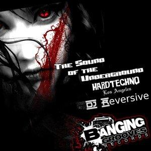 DJ Reversive