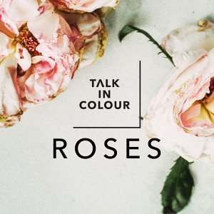 Talk in Colour 歌手頭像