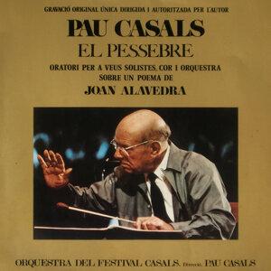 Pau Casals & Orquestra Del Festival Casals i Cors Del Conservatori 歌手頭像