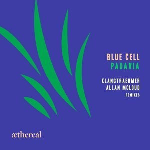 Blue Cell 歌手頭像