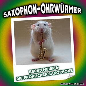 Bernd Meier & Die Frohlichen Saxophone 歌手頭像