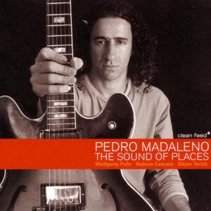 Pedro Madaleno 歌手頭像