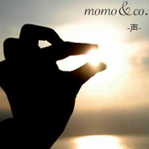 momo&co. 歌手頭像