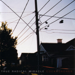 True Radical Miracle 歌手頭像
