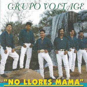 Grupo Voltage 歌手頭像