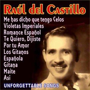 Raúl Del Castillo 歌手頭像