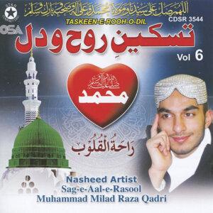 Muhammad Milad Raza Qadri 歌手頭像