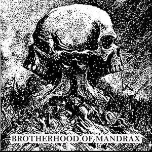 Brotherhood Of Mandrax 歌手頭像