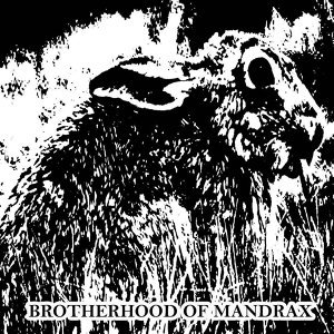 Brotherhood Of Mandrax 歌手頭像