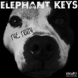 Elephant Keys 歌手頭像