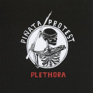 Piñata Protest 歌手頭像