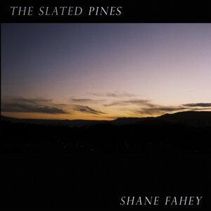 Shane Fahey