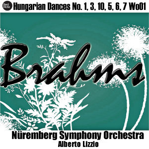 Nüremberg Symphony Orchestra & Alberto Lizzio 歌手頭像
