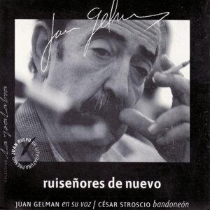 Juan Gelman 歌手頭像
