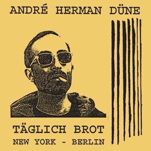 Andre Herman Dune 歌手頭像