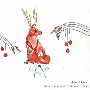 Adam Lipman 歌手頭像
