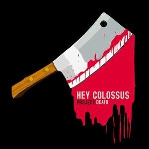 Hey Colossus 歌手頭像