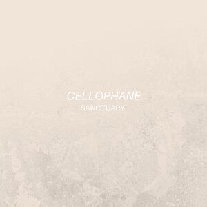 Cellophane 歌手頭像