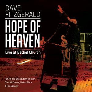 Dave Fitzgerald 歌手頭像