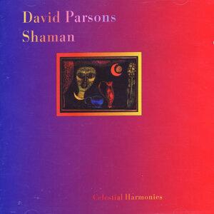 David Parsons 歌手頭像