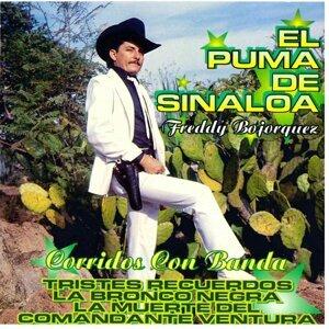 El Puma De Sinaloa 歌手頭像
