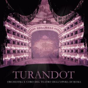 Orchestra E Coro Del Teatro San Carlo Di Napoli 歌手頭像