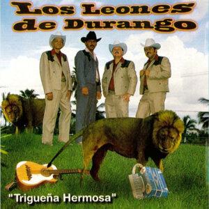 Los Leones De Durango 歌手頭像