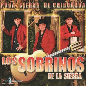 Los Sobrinas De La Sierra 歌手頭像