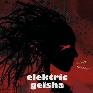 Elektric GEISHA 歌手頭像