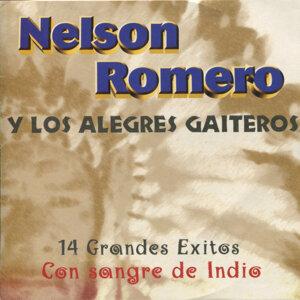 Nelson Romero y Los Alegres Gaiteros 歌手頭像