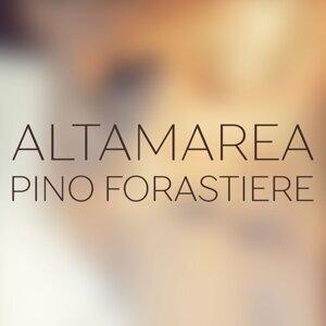 Pino Forastiere 歌手頭像