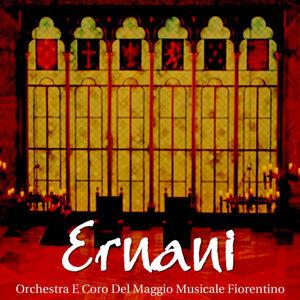 Orchestra E Coro Del Maggio Musicale Fiorentino 歌手頭像