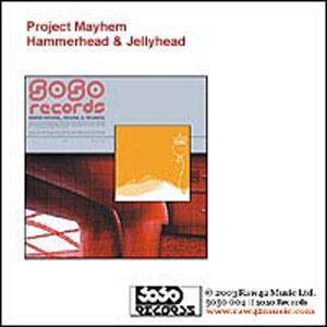 "Project Mayhem 12"" 歌手頭像"