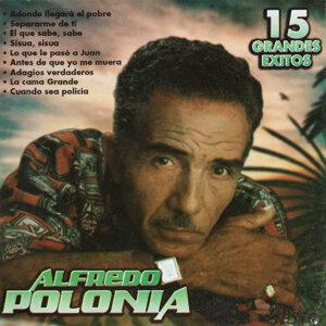 Alfredo Polonia 歌手頭像