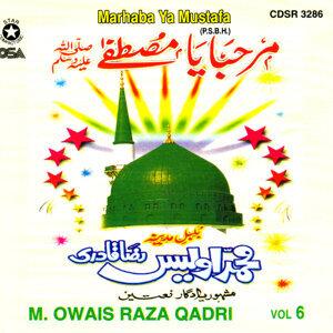 M. Owais Raza Qadri 歌手頭像