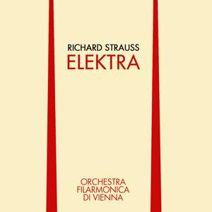 Orchestra Filarmonica Di Vienna 歌手頭像