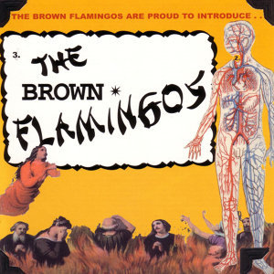 The Brown Flamingos 歌手頭像