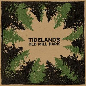 Tidelands 歌手頭像