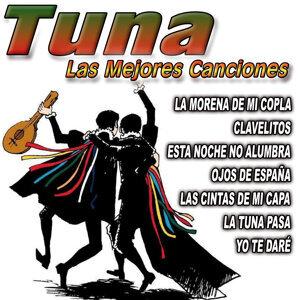 Tuna Universitaria Del Reposo 歌手頭像